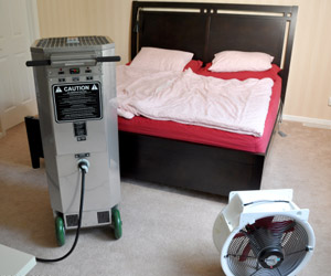 Bed Bug Heat Treatment Extermination
